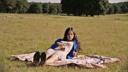Del norte al sur: México retratado en las películas nominadas alAriel