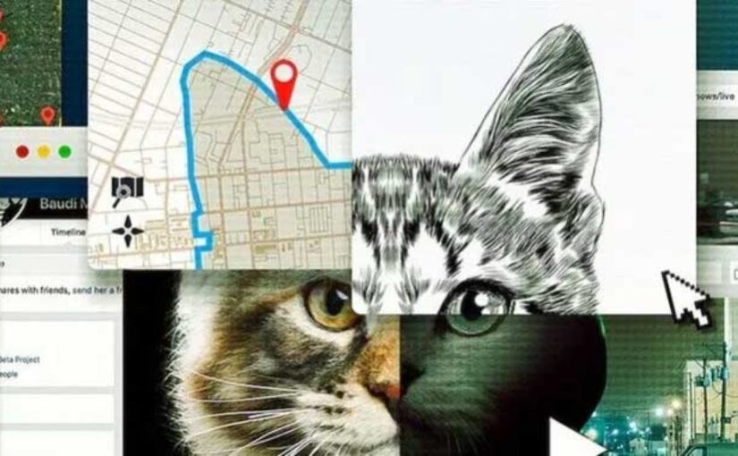 No te metas con los gatos: el nacimiento de un asesino enInternet